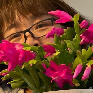 カミさんのサボテンの花