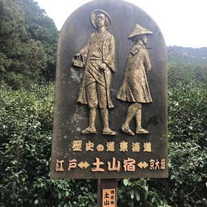 三子山南峰(3峰)・三子山中峰(2峰)・三子山(滋賀県) 歩きながら自分と向き合う静かな山