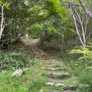 猪子山 久々に通い慣れた里山へ
