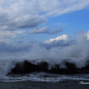 冬の日本海波高し