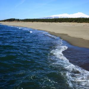 春の海岸歩き
