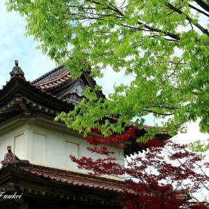 散策松山歴史公園