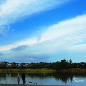 飯森山公園の秋
