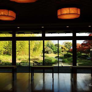 建物から望む秋の風景
