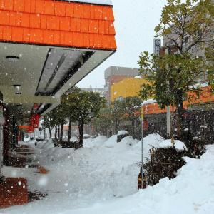 観測史上初めての降雪