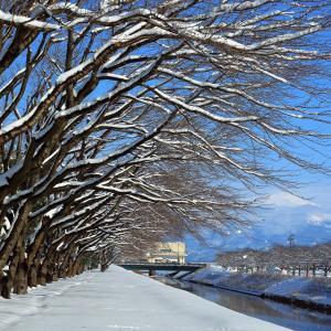 降雪の翌日は青空が広がった