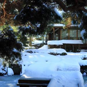 日本庭園の雪景色
