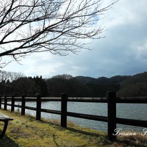 ラムサール条約登録の上池の散策