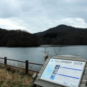 春間近な下池と大山公園を散策