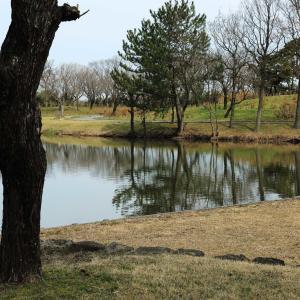 公園は日一日と緑を増しています。