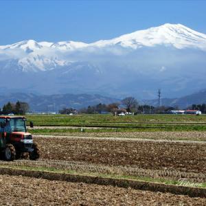 庄内平野で田起こしが始まる
