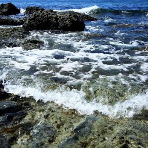 庄内海岸の岩場 その1