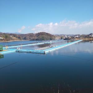 2019年度(2020年)わかさぎ釣行・・9群馬県鳴沢湖 第9弾
