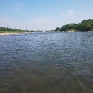 2021本流釣行・・12 群馬県利根川 第5弾