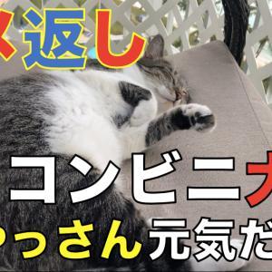 グアムのコンビニ大阪のおっちゃん、元気やったでぇ。