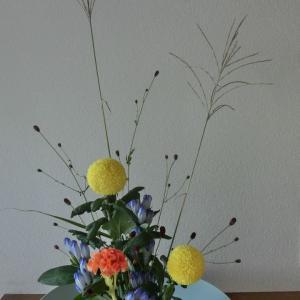 ランラン玄関の生け花NO.113 坂戸整体院ランラン
