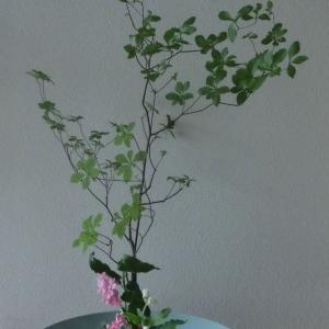 ランラン玄関の生け花NO.116 坂戸整体院ランラン