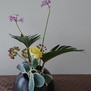 ランラン玄関の生け花NO.138 坂戸整体院ランラン