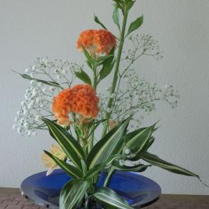 ランラン玄関の生け花NO.111 坂戸整体院ランラン