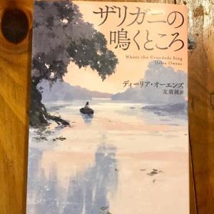 『ザリガニの鳴くところ』 過酷で美しい小説でした