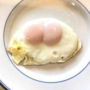 卵料理はシンプルが美味しい?