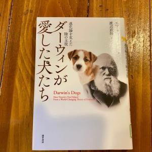 『ダーウィンが愛した犬たち』