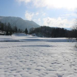 今日の天気 晴れ まるで雪の多い年の4月の様です。