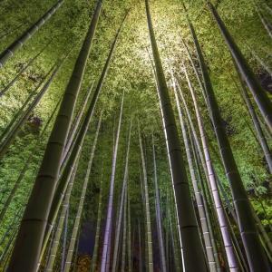 さきのもやもやの行方と京都の夜のHDR写真とは・・・