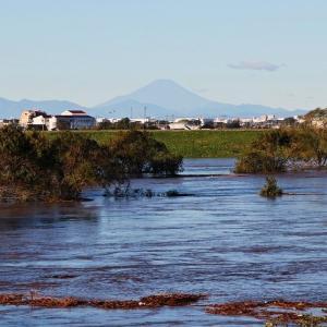 台風19号 江戸川増水