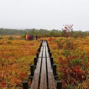 高層湿原 世界谷地