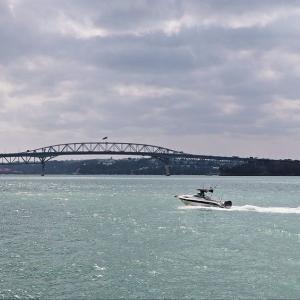 ワイテマタ湾 横断橋