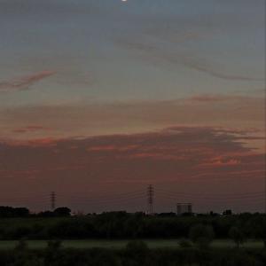 暁の 残月