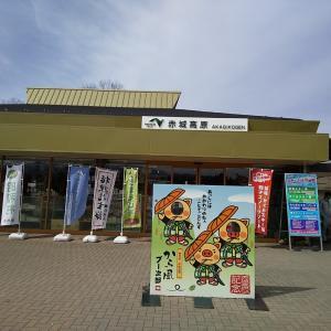 2020年3月 新潟旅行のランチ&お土産編
