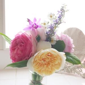 バラの季節です^ - ^