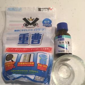 重曹+ハッカ油で、消臭、除湿、防虫剤を手作り&セリア購入品