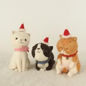 サンタ帽子をかぶった猫さんたちと最終撮影♪