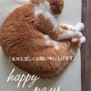 謹賀新年☆彡