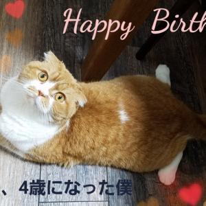 今日はお誕生日。