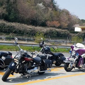 HANABI ツーリング~伊良湖「みなみ」