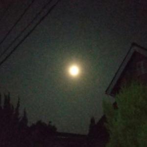 満月の夜に〜✨