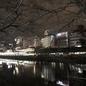 キラキラな東京を夜散歩⭐︎