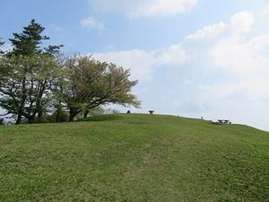 桜はおしまい浜石岳