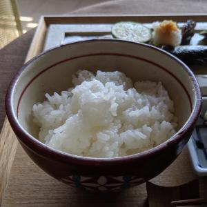 秋刀魚は新米で!