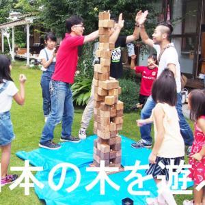 【日本中の間伐材で巨大ゲーム「古代建築賢者の塔」を作って遊ぶプロジェクト】にご支援お願いします!