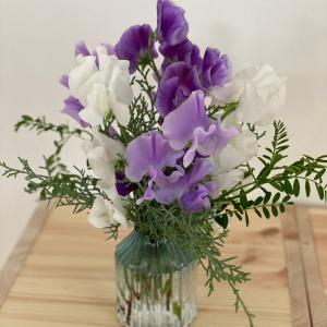 花に癒される日々。