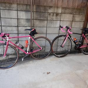 佐々神社~手力神社 サイクリング