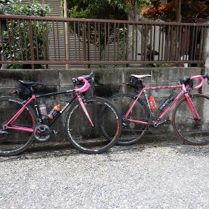 大和街道~手力神社 サイクリング