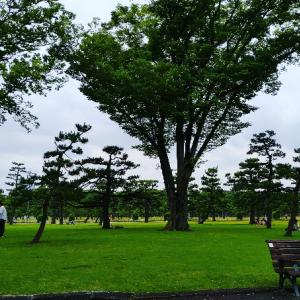 皇居、丸の内、東京駅や銀座も変わらずで嬉しい♥テンション上がりっぱなしで、脚がかなり疲れてる笑。