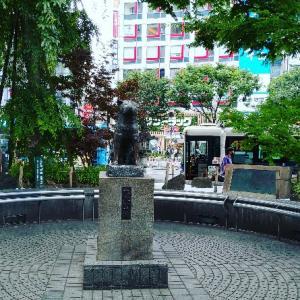 オープンした渋谷スクランブルスクエアへ。渋谷エリアでは最も高い地上47階建ての商業施設で景色最高