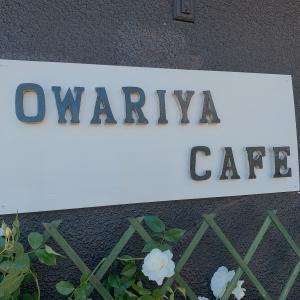 宇部市『Owariya cafe(オワリヤカフェ)』:お花サンド 610円!